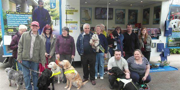 Suze Guide Dogs